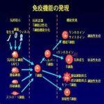 免疫機能の知識