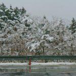 寒波の影響/インフルエンザ流行警報発令(東京都)