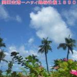 スクート(LCC)ハワイ片道9900円の安さ・評価も好評